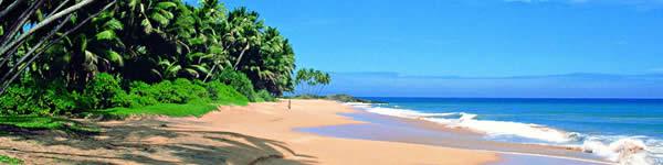 Sri Lanka letenka